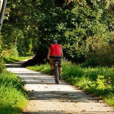 Fahrradfahren im Waldviertel