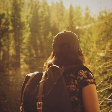 Wandern entlang der Thaya